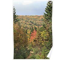 Fall Colors of Cape Breton  Poster