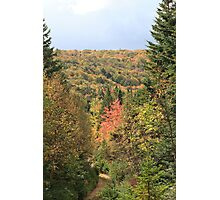 Fall Colors of Cape Breton  Photographic Print
