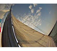 Supporter of Sails Photographic Print