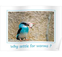 No Worms Poster