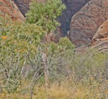 Scenery, Kununurra to Bungle Bungles, Kimberley, Western Australia Sticker