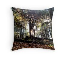 Campbell Falls State Park Reserve Throw Pillow