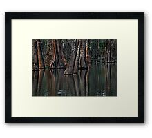 Darkness at the Edge of the Bayou Framed Print