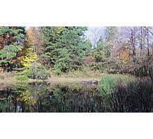 Jefferson Memorial Forest, near Louisville, Kentucky Photographic Print