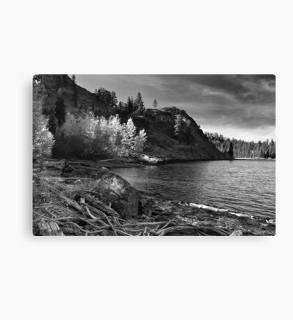 Last Light Before The Storm Canvas Print