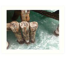 Wharf Timbers  Art Print