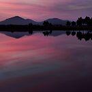 You Yangs dusk by Barry Feldman