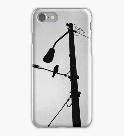 wired crow iPhone Case/Skin
