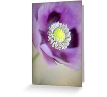Sweet Poppy Greeting Card