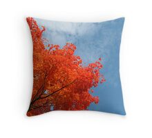 The Brilliance of October Color against the Sky Throw Pillow