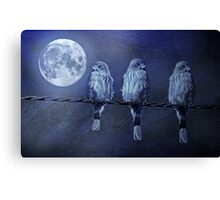 Moonlight Roost Canvas Print
