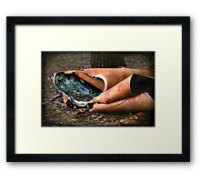 of ribbons and bows Framed Print