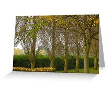 Autumn trees in the mist  Greeting Card