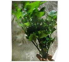 bouquet a la celery . . . .  Poster