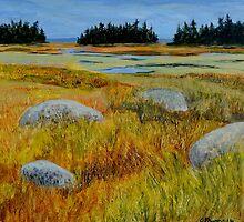 Salt Marsh on Shore Road by windward