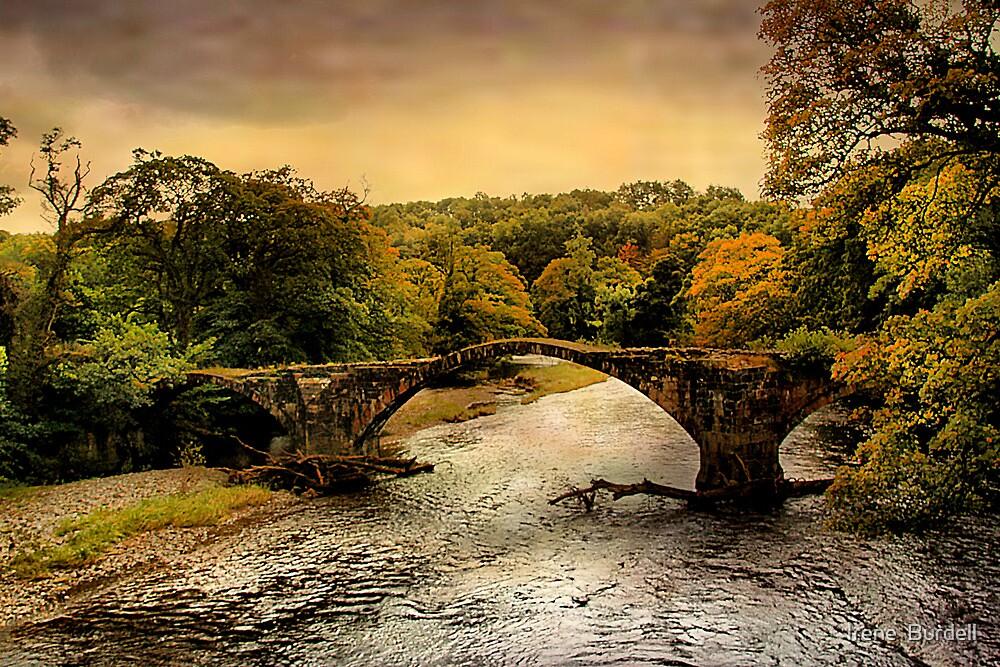 Cromwells Bridge by Irene  Burdell