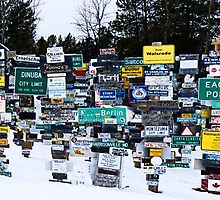 Sign Post Forest Panorama by Yukondick