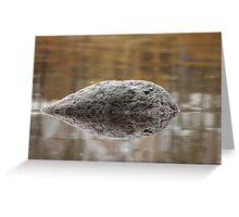 black meteorite  Greeting Card