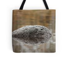 black meteorite  Tote Bag