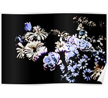Contemporary Floral Medley Poster