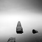 Loch Ard Jetty in the mist by Grant Glendinning