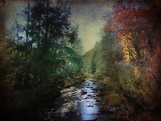 A Stream Runs Through It by vigor