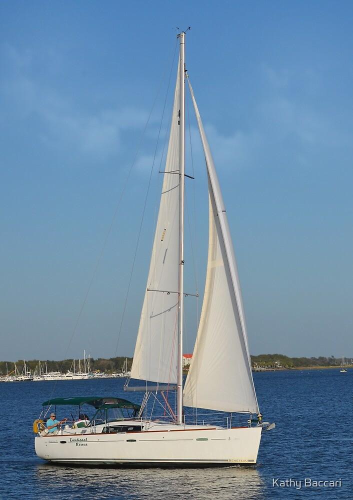 Sailing Charleston Harbor by Kathy Baccari