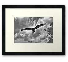 """On the Hunt"" (B&W) Framed Print"