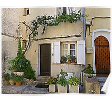 Vines And Shutters Poster