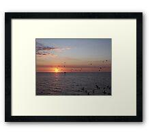 Birds in Silhouette Framed Print
