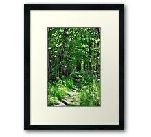 """Through the Forest"" Framed Print"