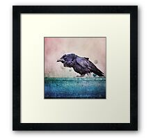 Words of a Raven Framed Print