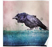 Words of a Raven Poster