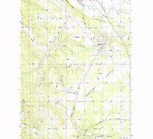 USGS Topo Map Washington State WA Napavine 242781 1985 24000 by wetdryvac