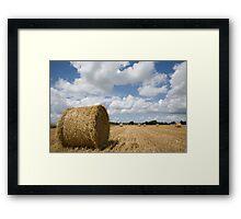 Harvest time in France Framed Print