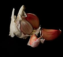 Garlic by Wendy Williams