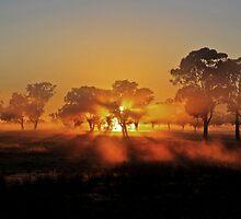 early morning fog by Simon Penrose