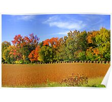 Autumn in a Line..... Poster