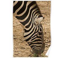 I got Stripes Poster