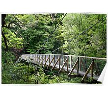 Pelorus Swingbridge Poster