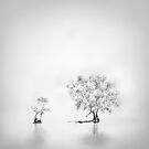 Mother and son by howpin