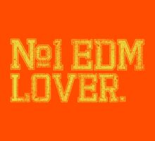 No.1 EDM (Electronic Dance Music) Lover. by DropBass