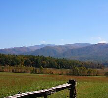 Fall in the Great Smoky Mountains by Tony Wilder