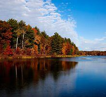 Autumn Splendor by Thomas Young
