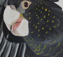 'BLACK COCKATOO' Sticker