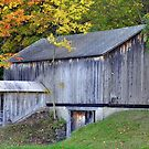 Autumn Barn by Gayle Dolinger