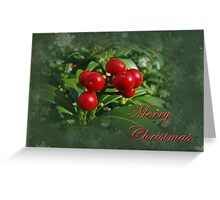 Merry Christmas Greeting Card - Holly Berries Greeting Card