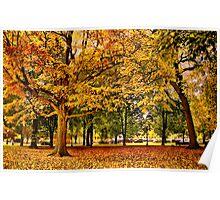 Autumn in Boston  Poster