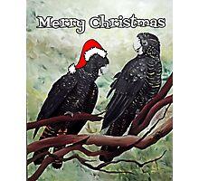 'COCKY CHRISTMAS' Photographic Print