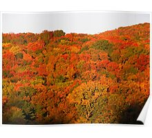 Autumn in the Ozarks #2 Poster